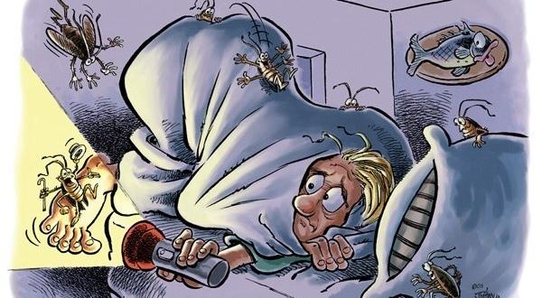 Что делать, чтобы избавиться от тараканов навсегда