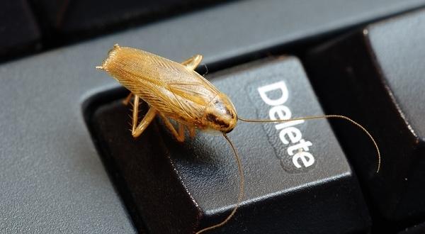 Избавление от тараканов — задача для лучших средств и химикатов