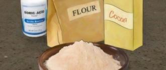 Ингредиенты, входящие в рецепт борных шариков от тараканов
