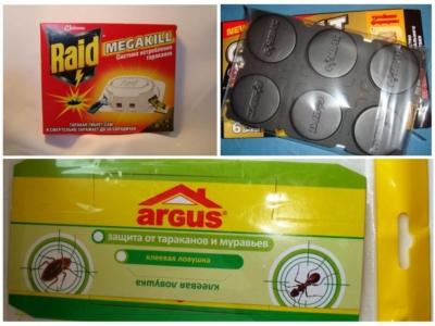 Непрошеные мелкие соседи. Откуда берутся муравьи в доме и как избавиться от них навсегда?